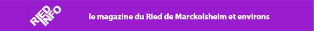 ried-info